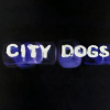 """City Dogs"" online / Converse Iberia."