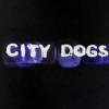 """City Dogs"" online / Converse Iberia."