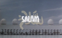 SALAM – Magenta Skateboards