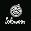 Solowood Skateboards promo.