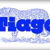 Village Psychic Tiago Lemos Remix.