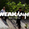 WEAKDAYS: VINCENT ALVAREZ SOTY