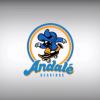 Andalé Bearings Brasil Crew #AndaleBrasaNation