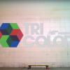 New Balance | Tricolor