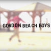 The Gordon Beach Boys: Israel Skate Trip.