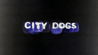 «City Dogs» online / Converse Iberia.