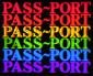 PASS~PORT – GOOD~BYE VX