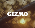 Nike SB   GIZMO
